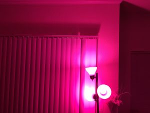 phillips_hue_best_buy_tj_jordan_review-2
